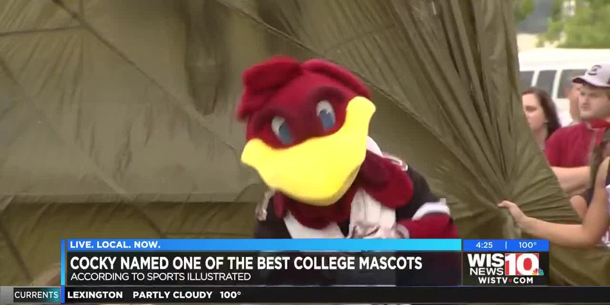 Cocky ranked in top 10 for greatest mascots in college football history
