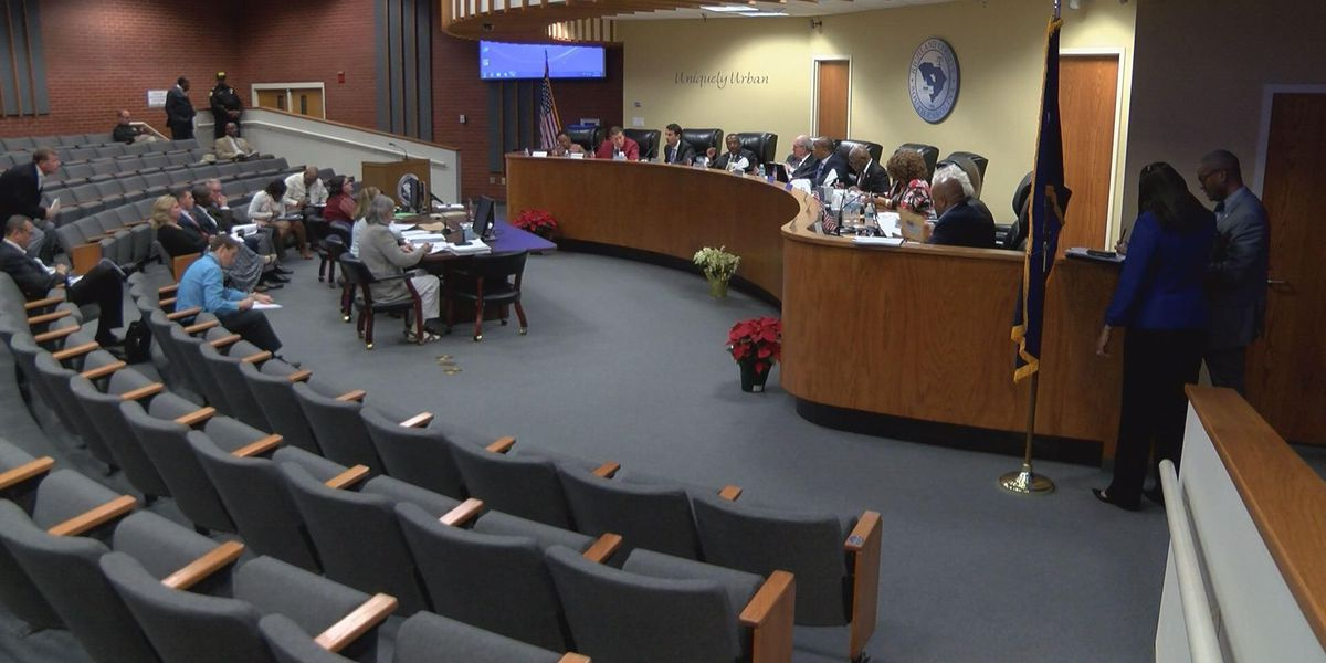 Two County Councilmen removed from important penny tax committee