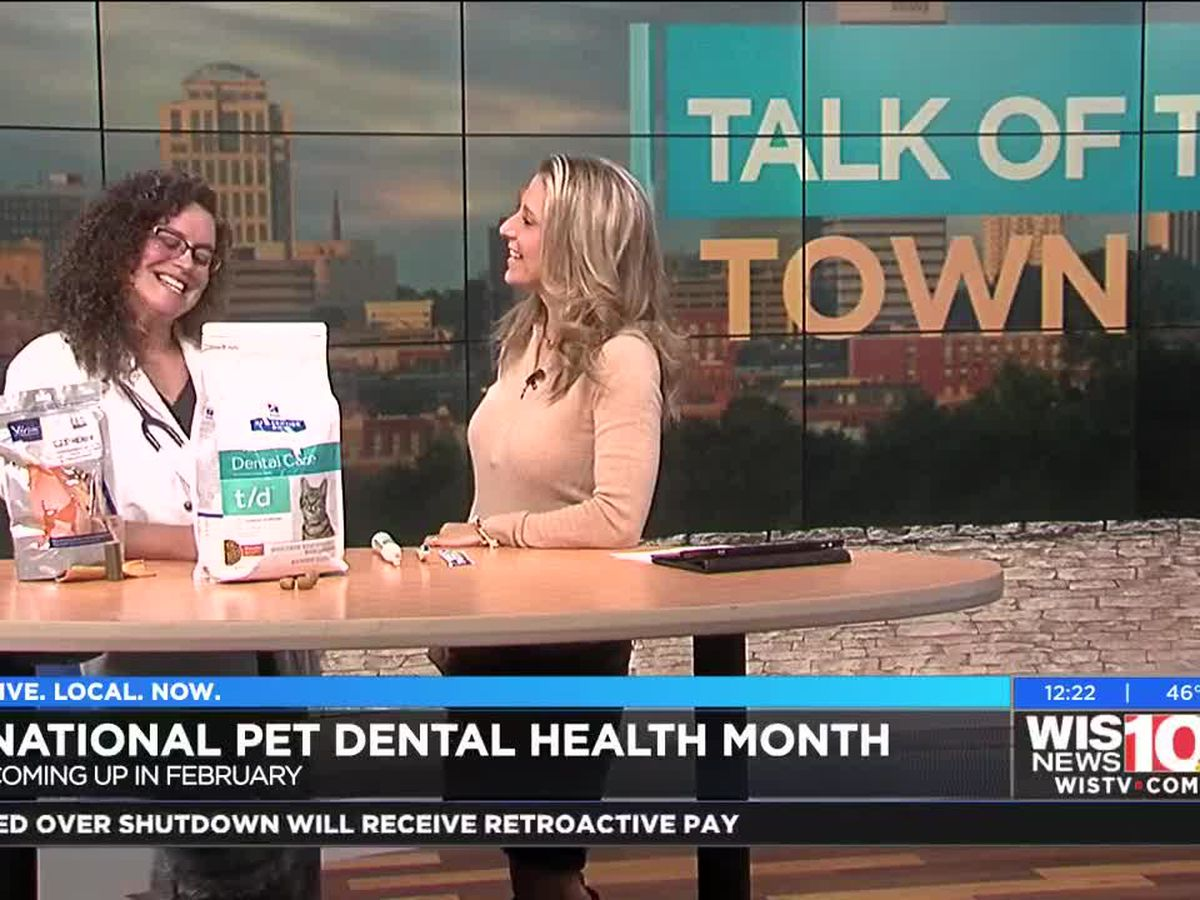 Talk of the Town: February is Nationa Pet Dental Health Month