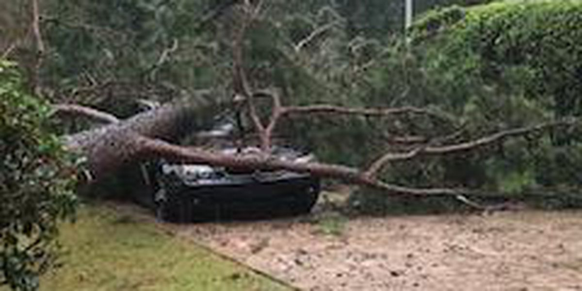 1 dead, thousands without power after Hurricane Michael in GA