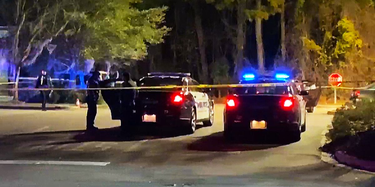 Coroner identifies Uber passenger who police say was killed by driver on Johns Island