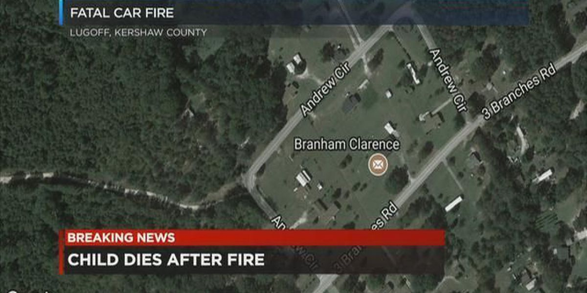 Child, 5, dies from burn-related injuries after being left in running car with siblings