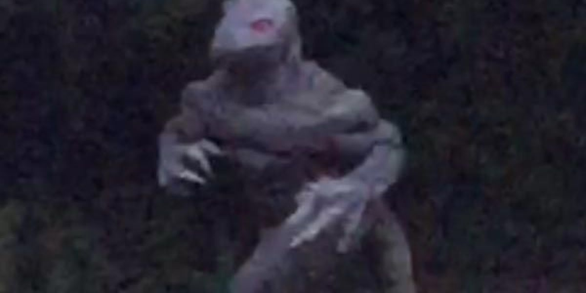 'Remain ever vigilant' of Lizard Man during eclipse, SCEMD says