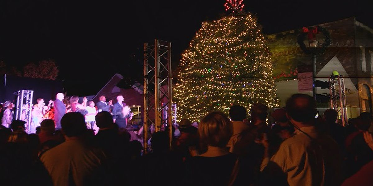 Dive into the holiday season at the 33rd annual Vista Lights