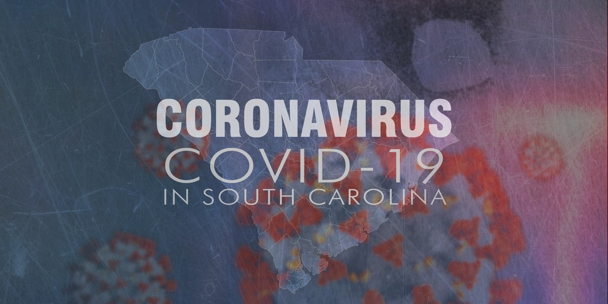 DHEC: 4 additional deaths, 241 new cases related to COVID-19 announced in S.C.