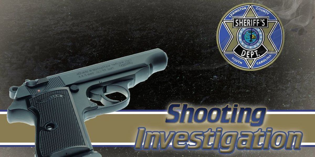 Shots fired at 44 Truck Stop in Lexington Co.