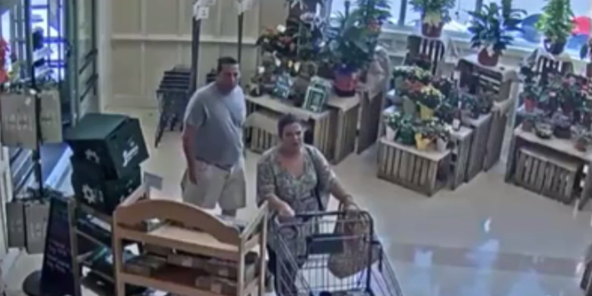 Suspects wanted for stealing over $1,200 in medication from Lowes Foods
