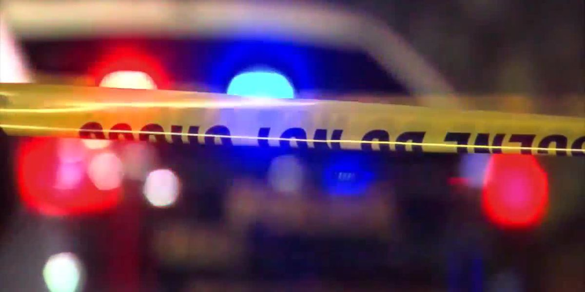 RCSD: 1 injured following shooting in Bookman Road, Nature Trail area