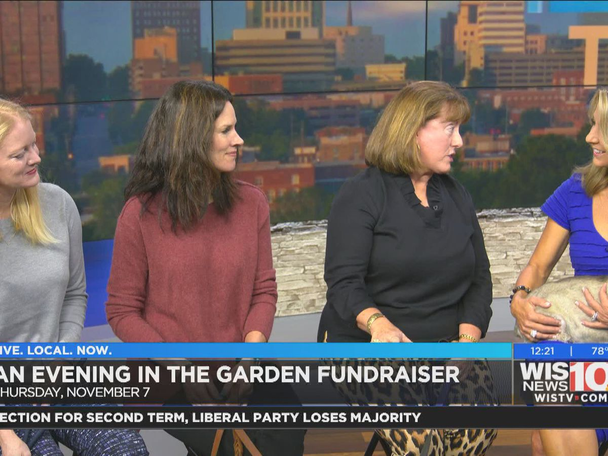 Help homeless animals with An Evening in the Garden