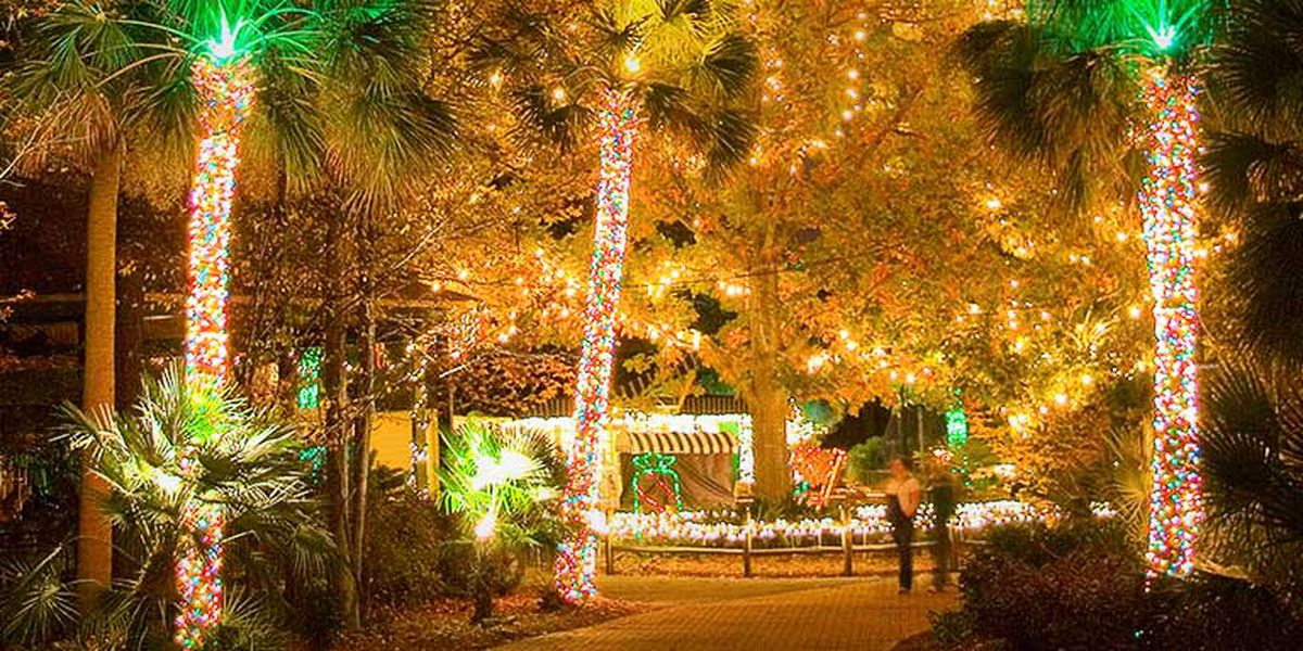 Help Riverbanks Zoo win 'Best Zoo Lights' in national contest