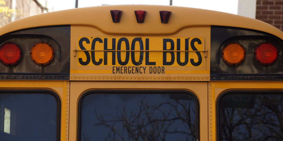 Child with autism was choked by another student on Charleston Co. school bus, lawsuit says