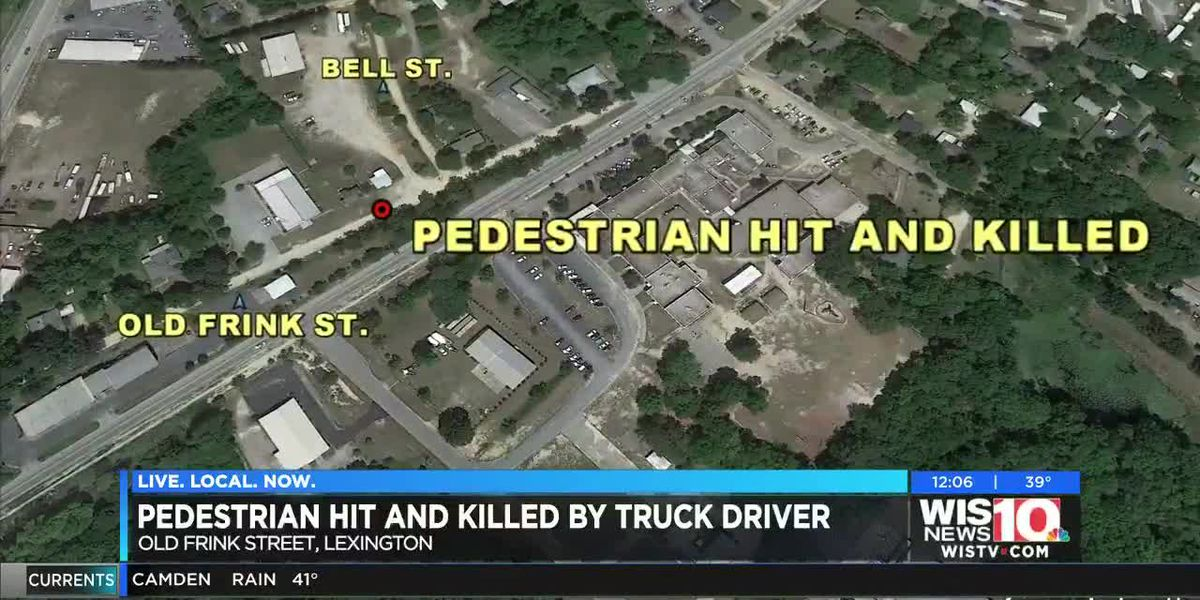 Pedestrian hit and killed by vehicle