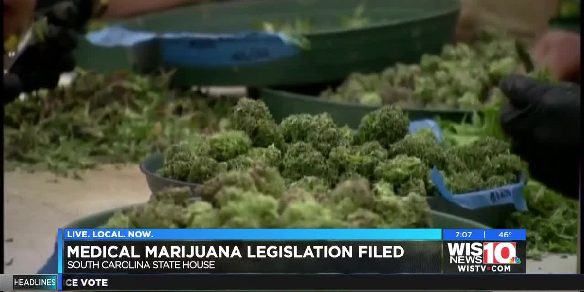 SC lawmakers introduce medical marijuana bill to the Statehouse Tuesday