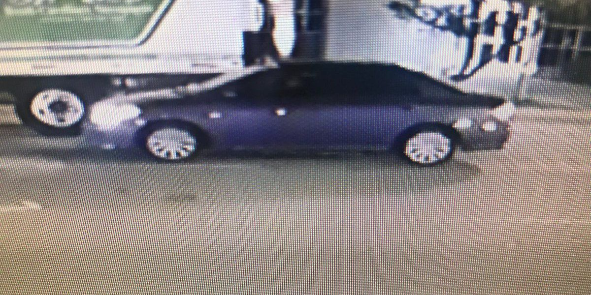 CPD looking for suspect in hit and run