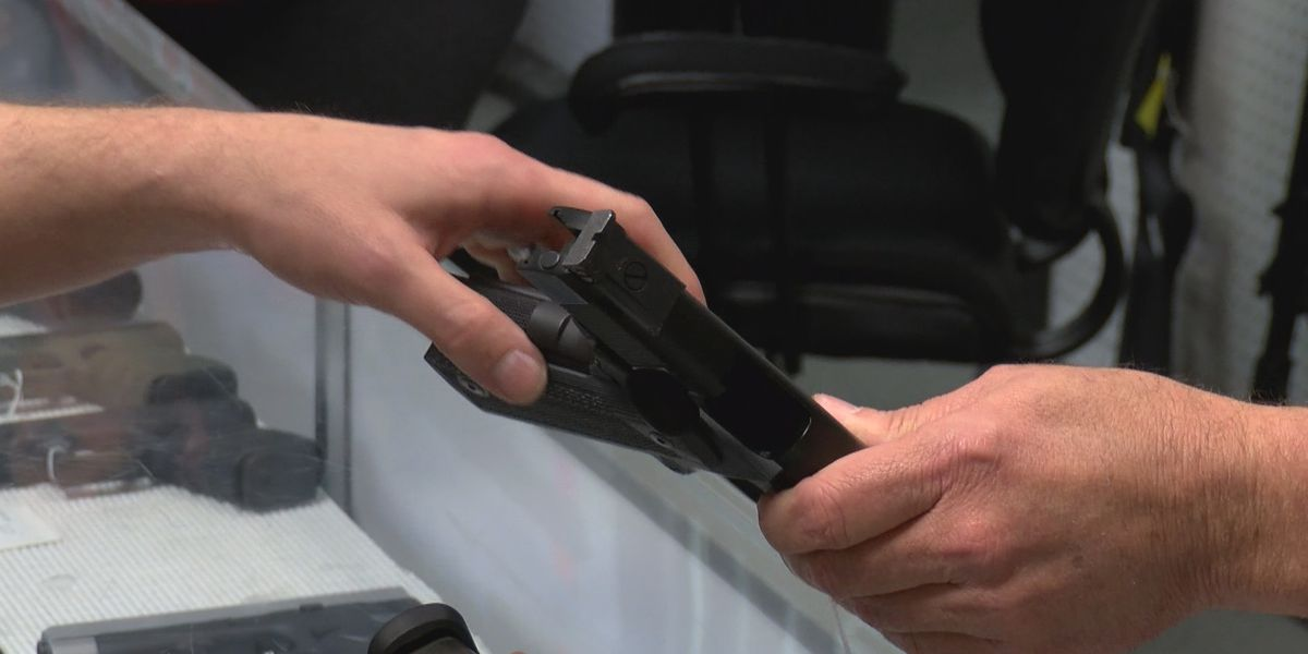 Renewed push for 'constitutional carry' in South Carolina