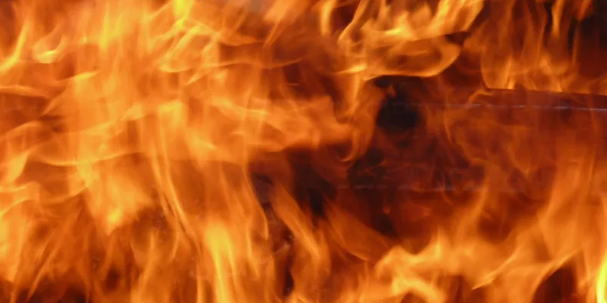 Fire officials investigate vehicle fire that spread to home in Columbia