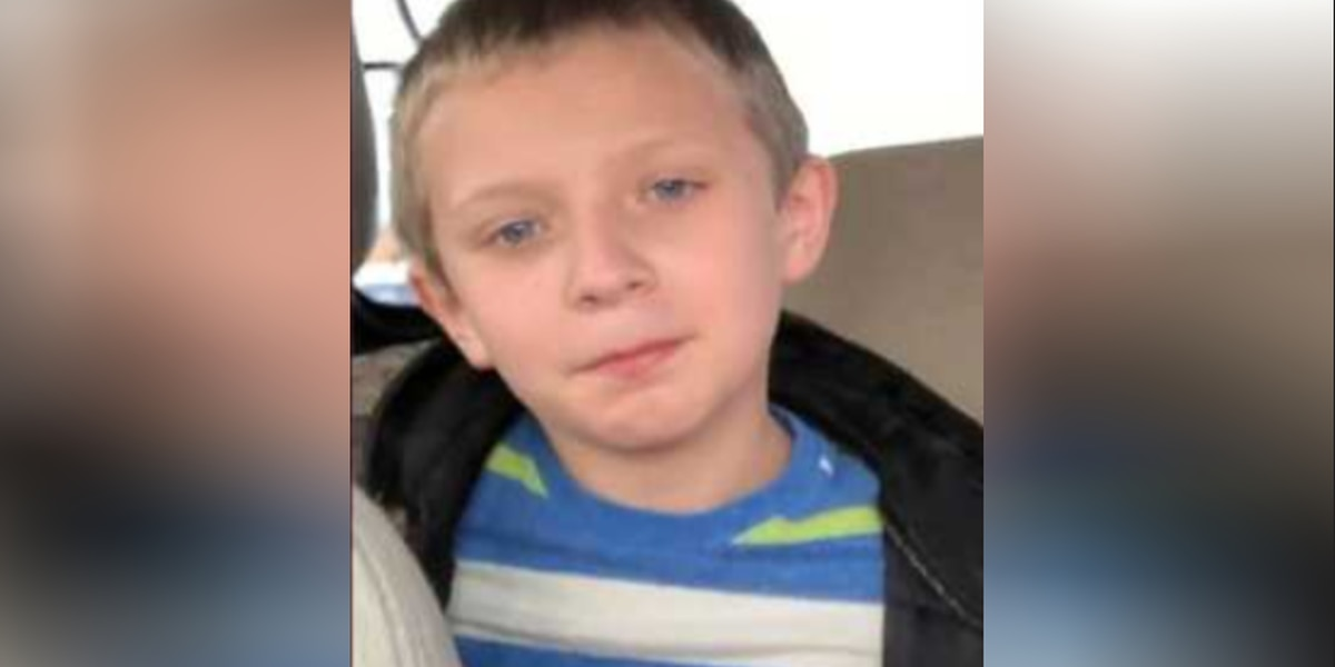 Laurens County 4th grader last seen going into the woods found safe, deputies say