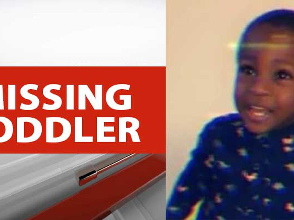 Police ask for public's help to find missing Upstate toddler