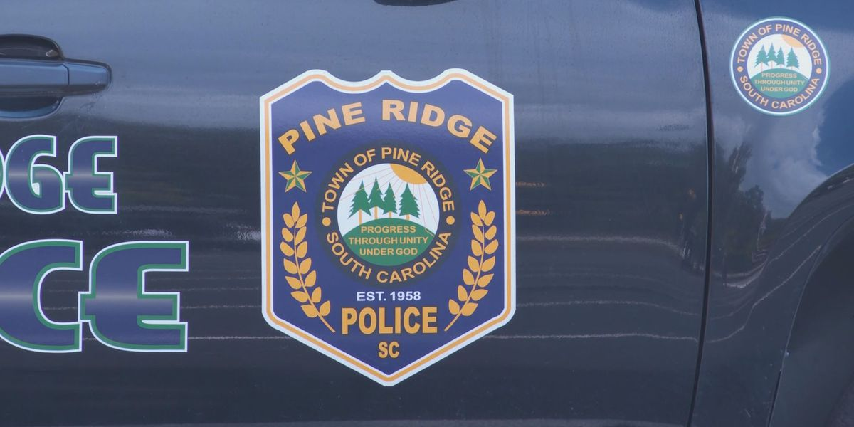 Town of Pine Ridge moves to find new police chief