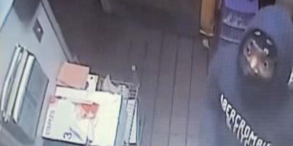 Suspect stole items from Irmo convenience store during burglary, officials say