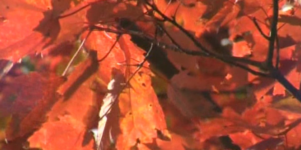 Fall begins, but warm weather may stick around in much of the U.S.
