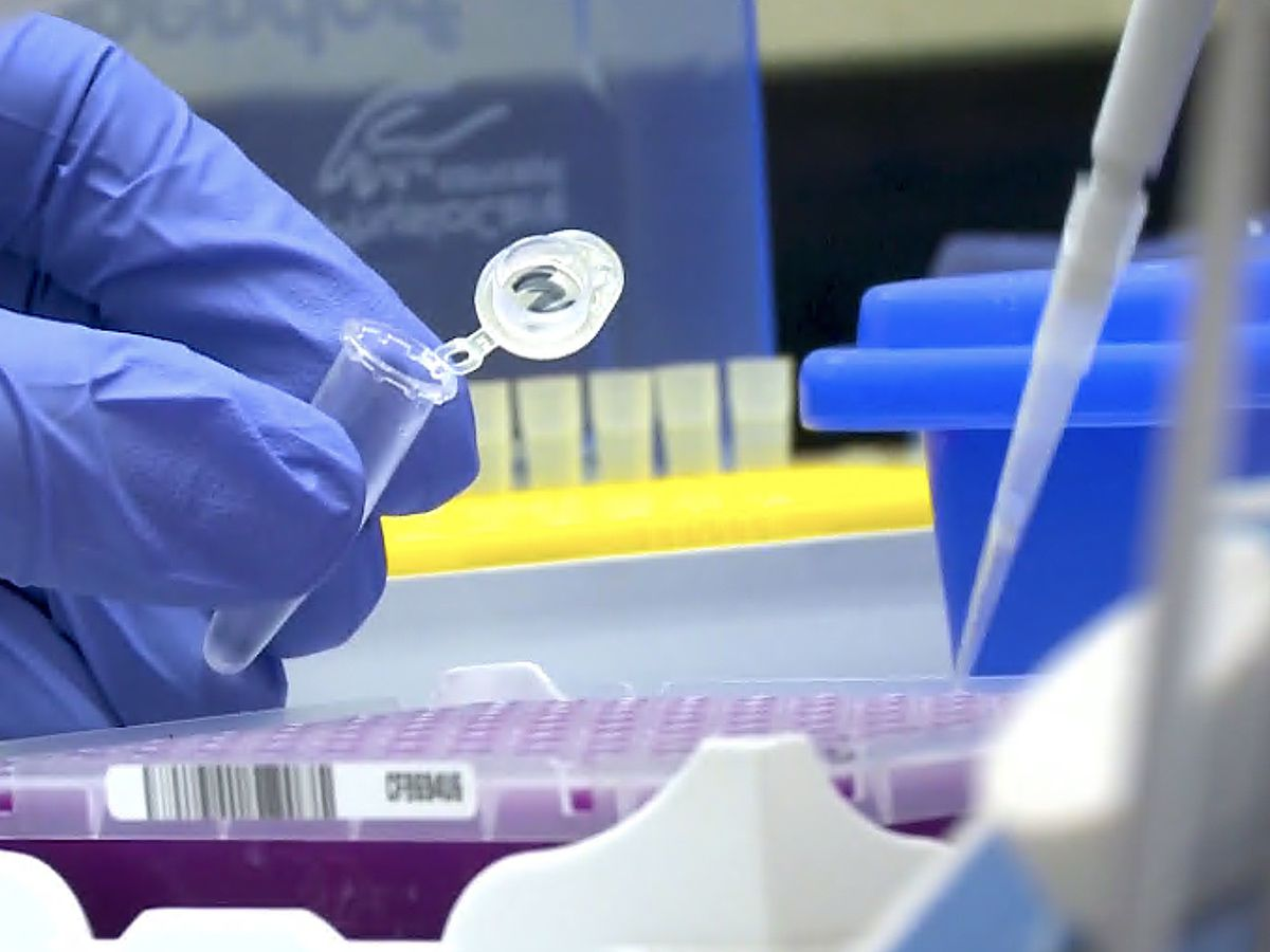 Spike in demand for COVID-19 tests could cause delays in results
