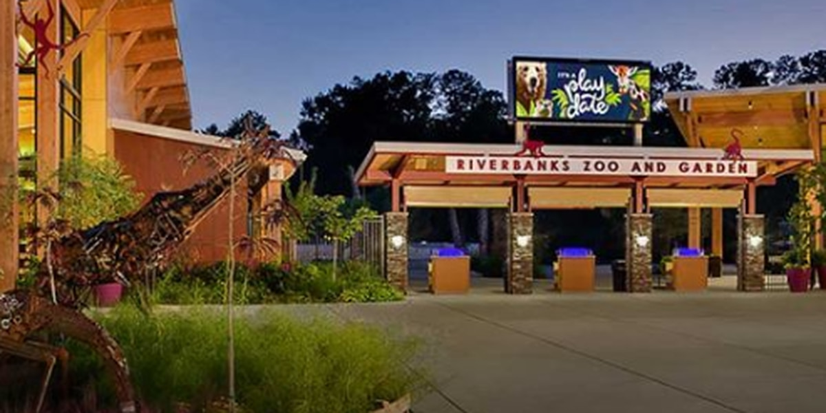 Riverbanks Zoo and Garden to reopen on Memorial Day weekend