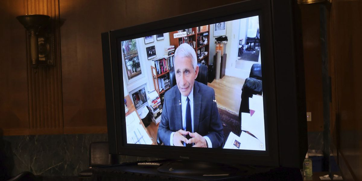 Health experts react to Dr. Fauci's comments that he'd want to clone SC's response to COVID-19