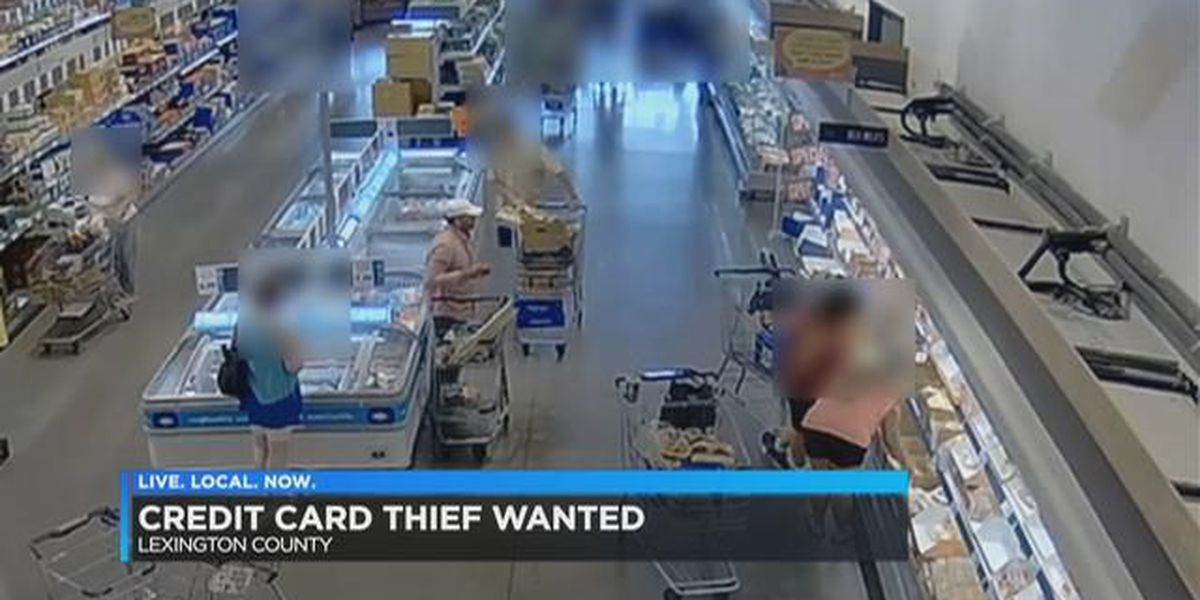 Credit card theft suspect at Lidl Foods