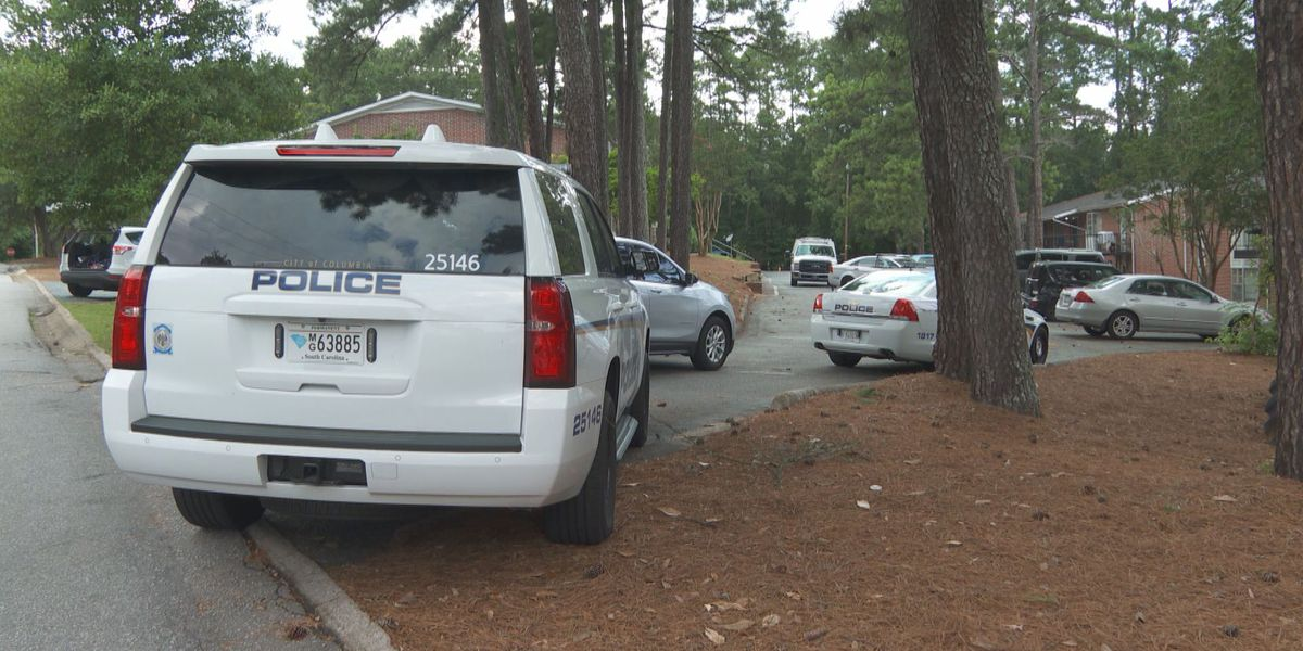 13-year-old boy killed in stabbing in north Columbia identified