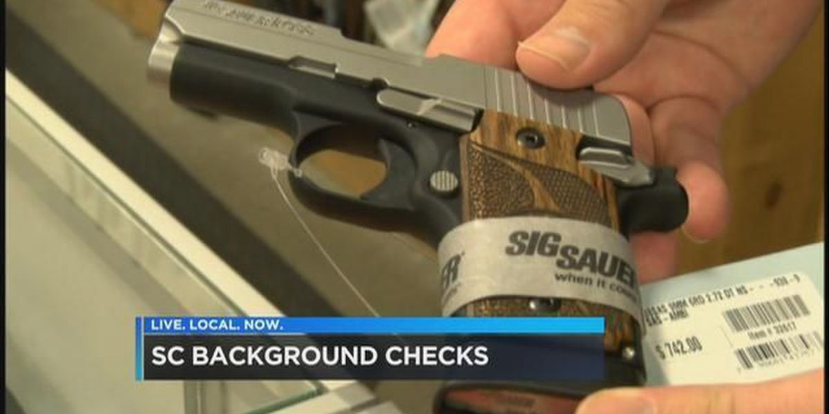 SLED Chief: Number of background checks for gun ownership ...