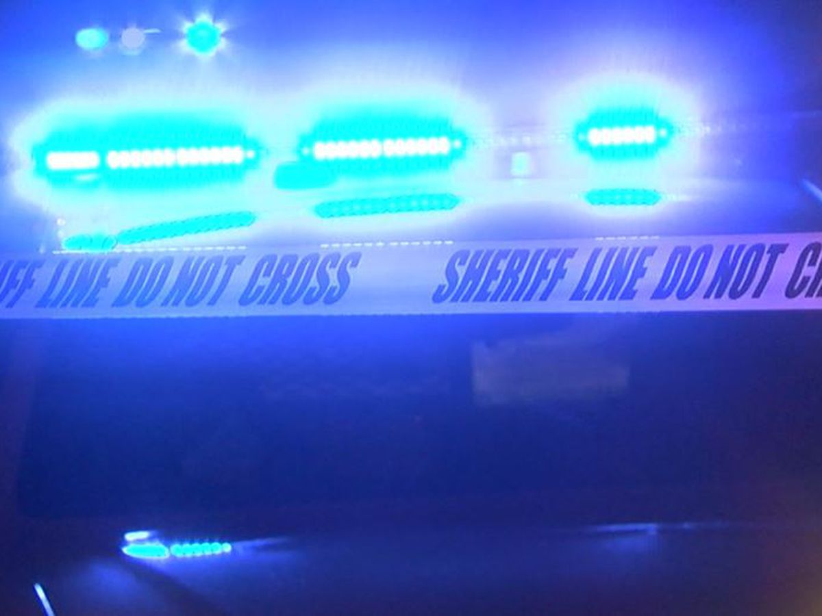 Man shot to death in his Sumter home, deputies say