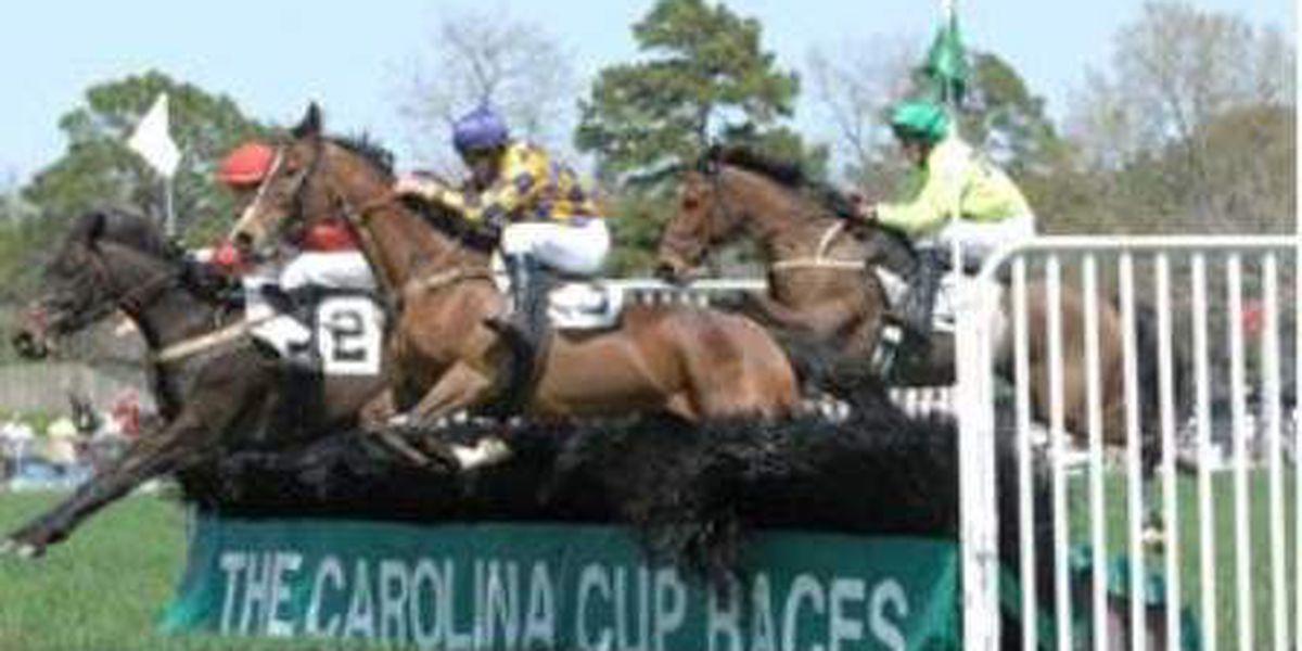 Carolina Cup Races canceled due to coronavirus concerns