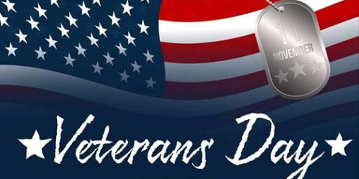 Downtown Columbia hosts 41st Annual Veterans Day Parade