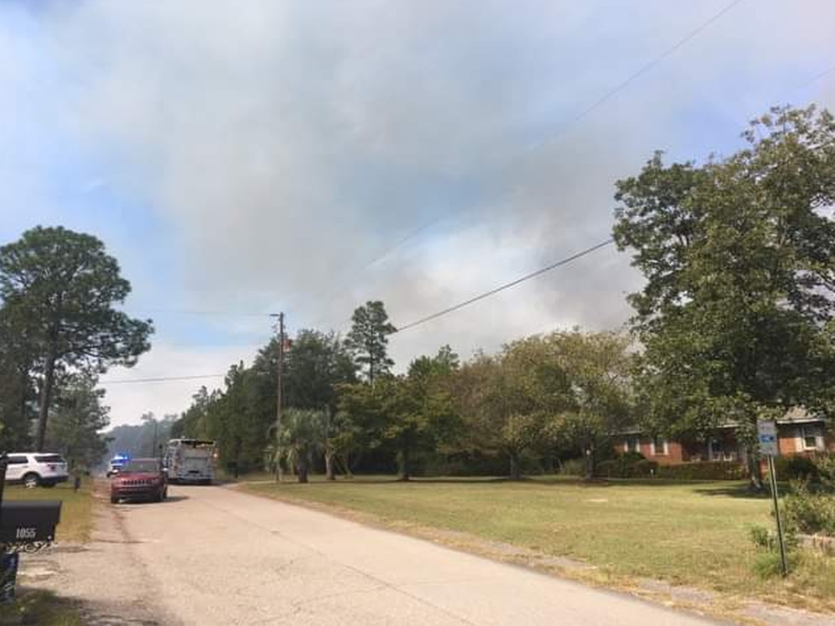 Brush fire in Lexington Co. catches attention but does little damage