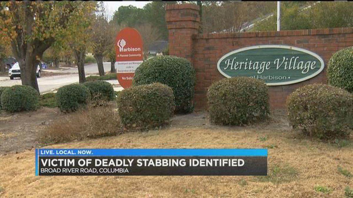 Coroner identifies 28-year-old man killed in Friday stabbing incident