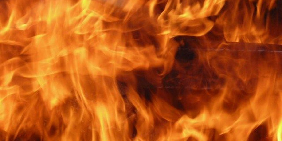 Person killed, dog rescued in mobile home fire in Gaston