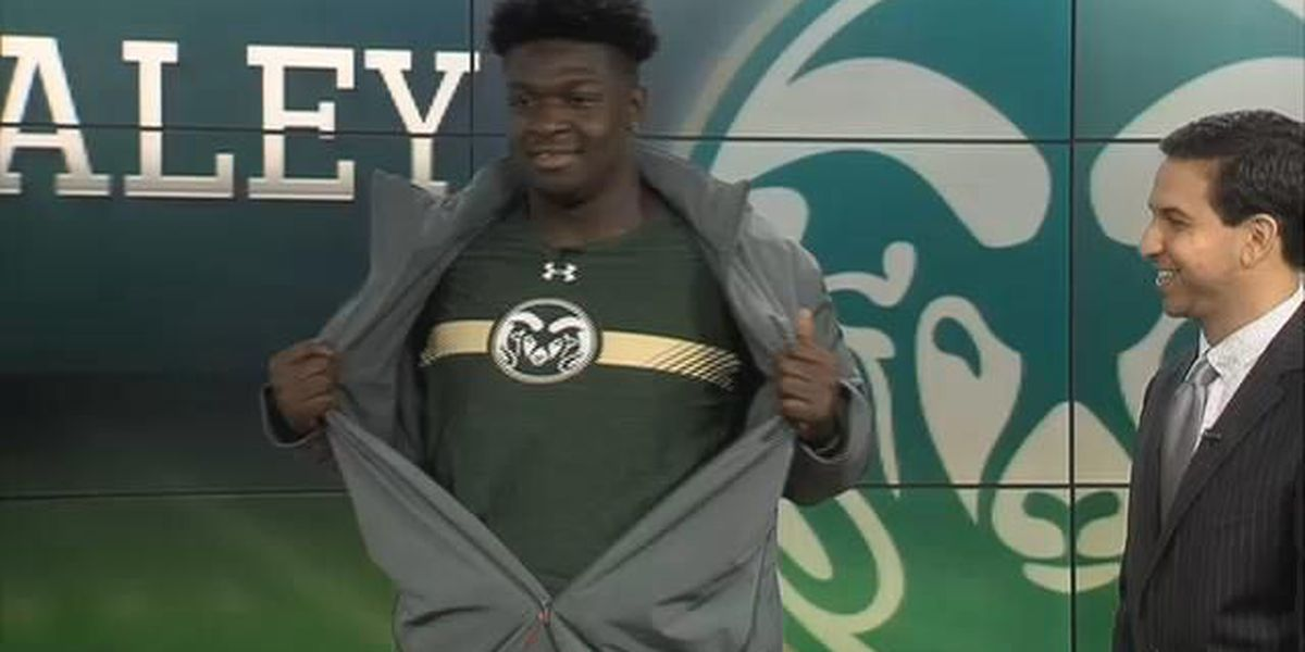 Blazers defensive star Daley commits to Colorado St.