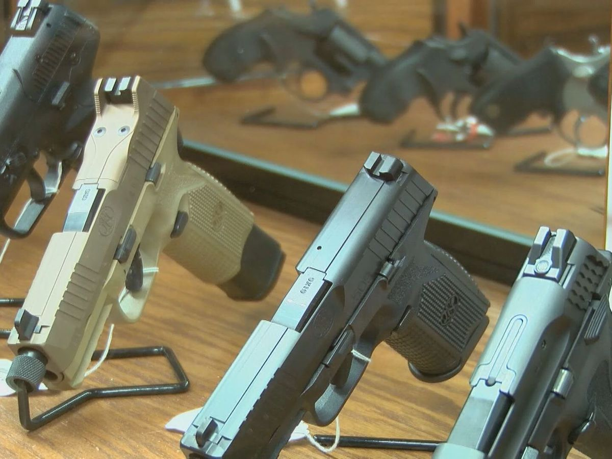 SC Senate rejects open carry of guns without permits