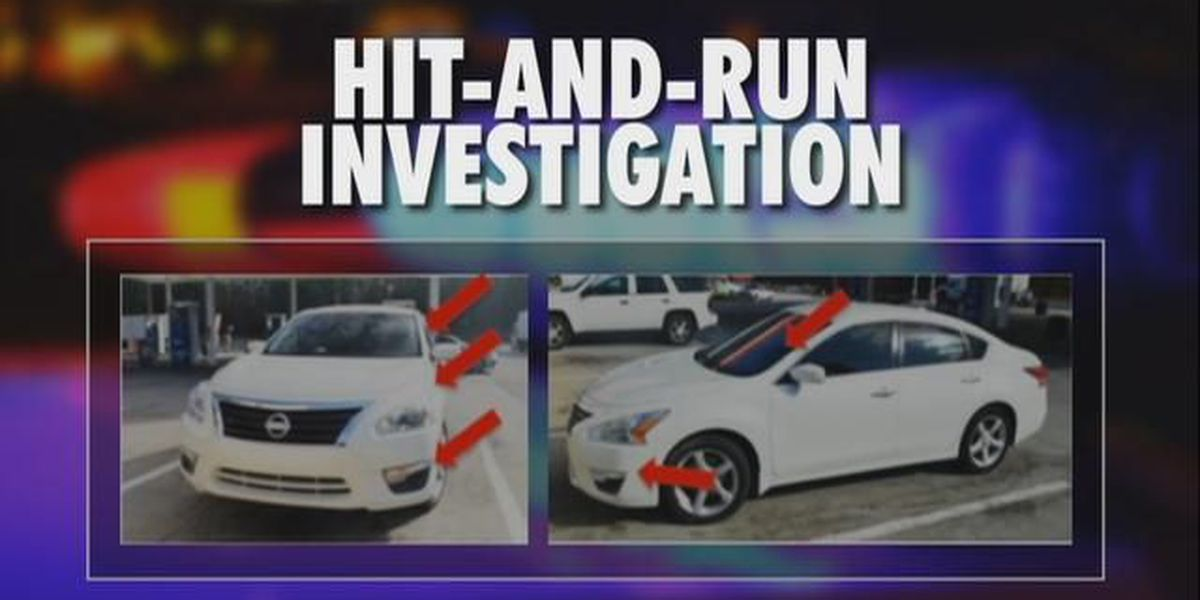 Search continues for driver of white Nissan, suspected in fatal hit-and-run