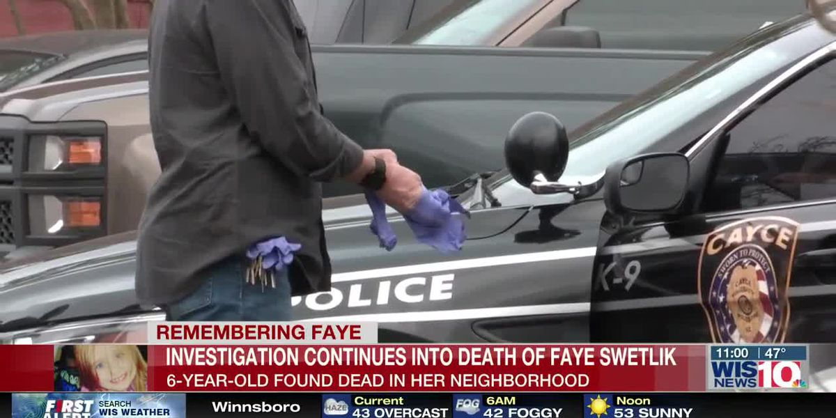 Faye Swetlik case update expected Tuesday