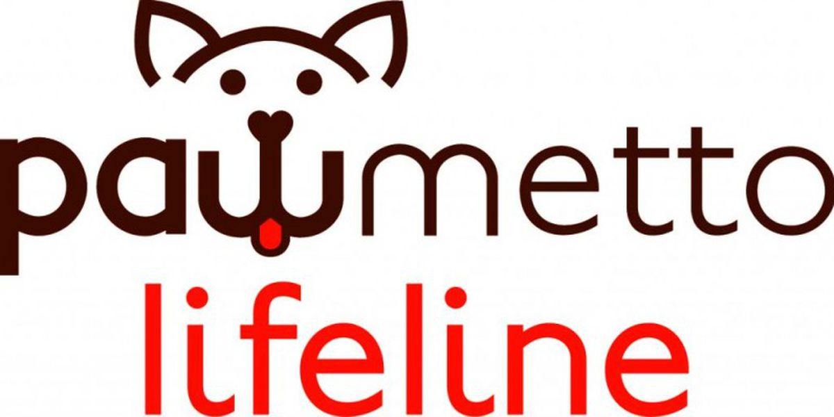Pawmetto Lifeline hosts emergency dog adoption special to save dogs from local kill shelters