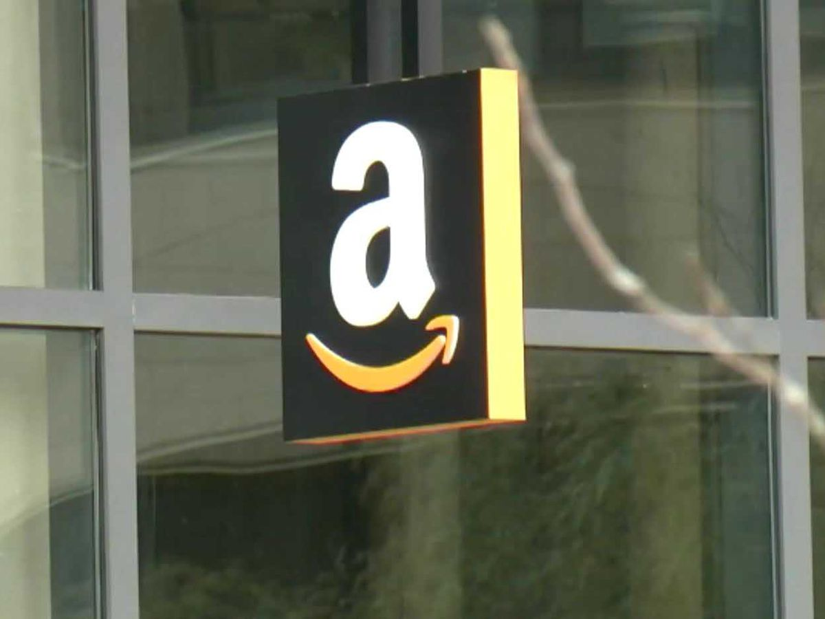 Amazon to split second headquarters between New York and Northern Virginia, report says