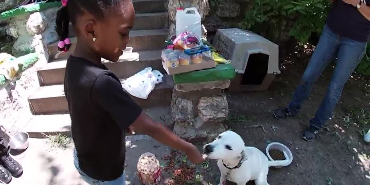 Missouri police captain helps bring doghouse to puppy