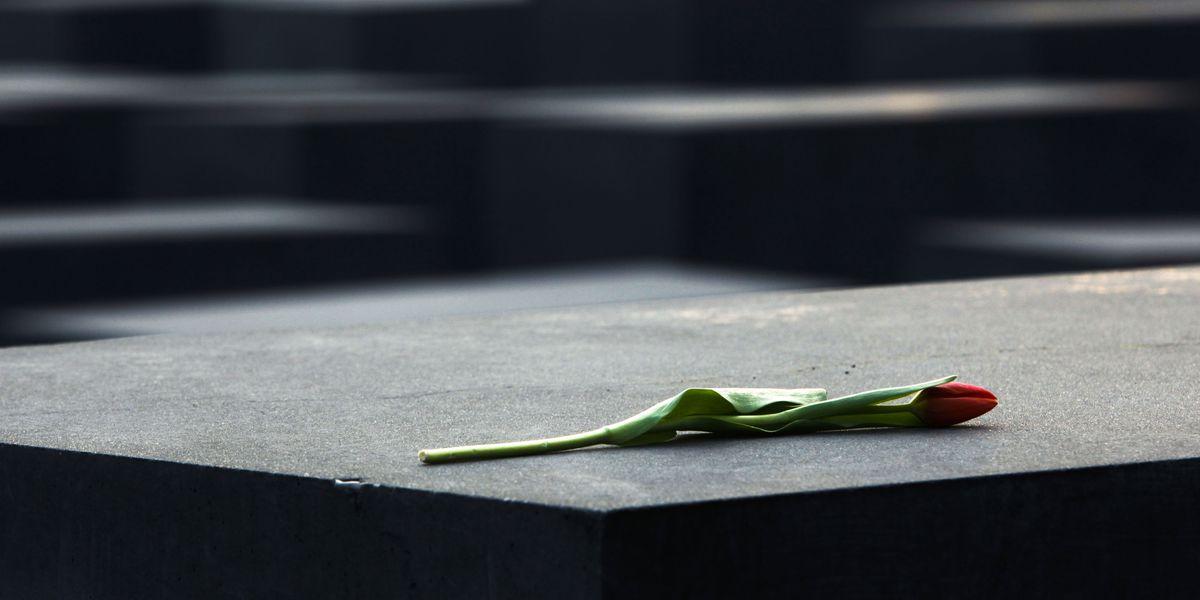 Survey: 63% of millennials, Gen Z unaware of key Holocaust facts