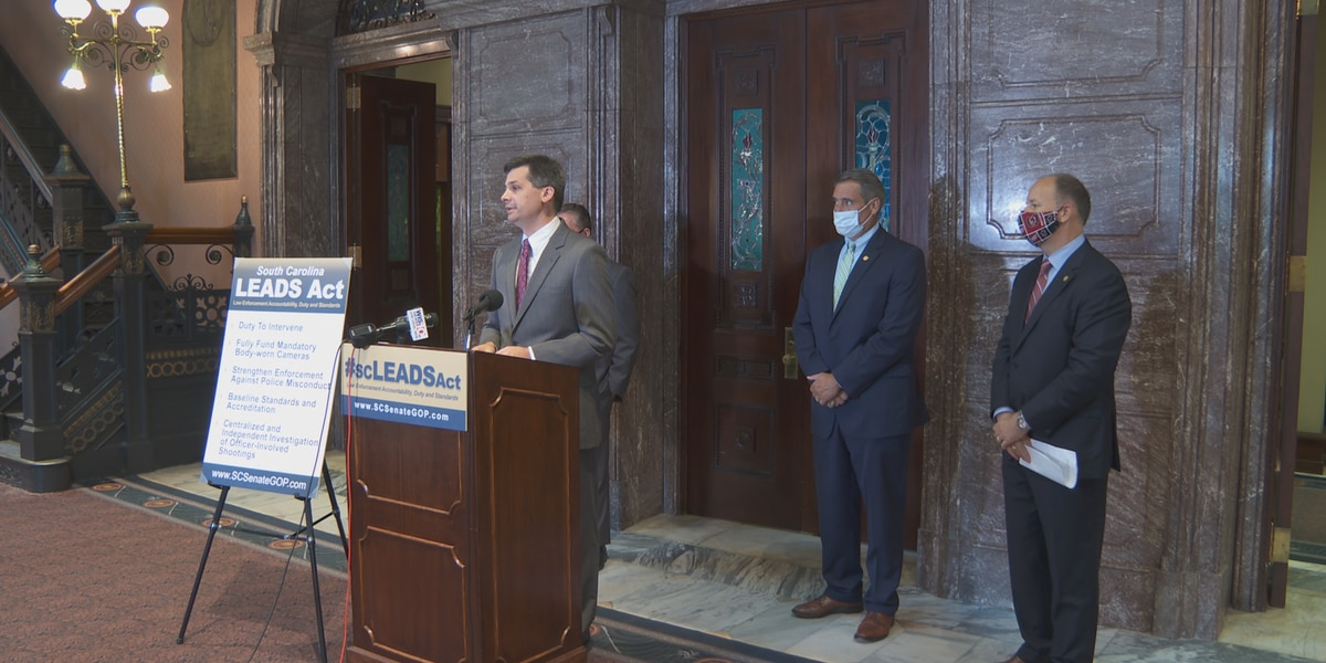 SC Republican Senators share police reform proposals, plan to work on legislation through this year