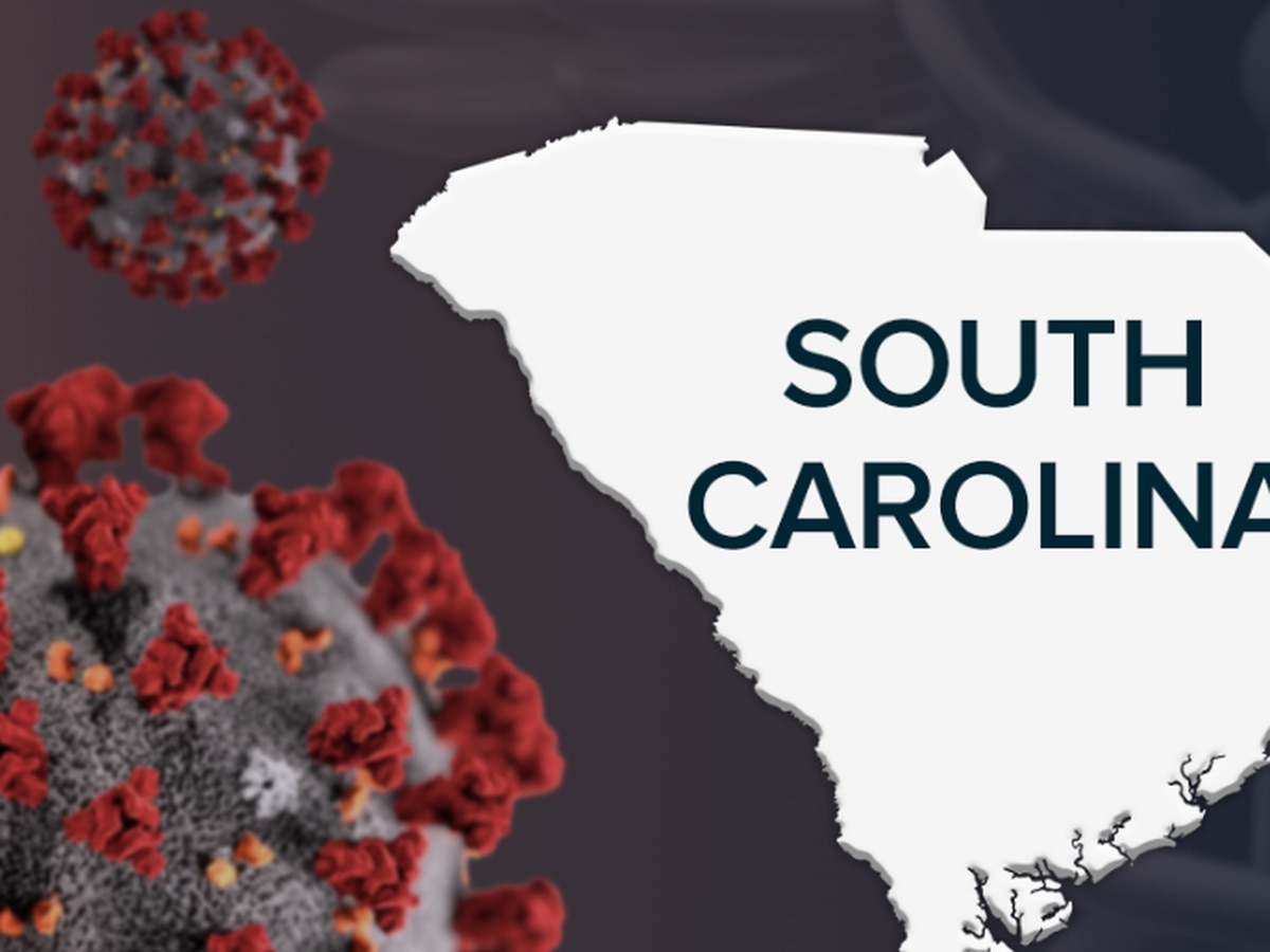 SC announces 628 new COVID-19 cases, 14 more deaths Saturday