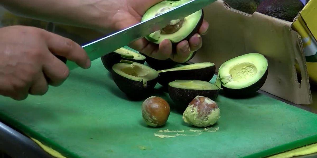 Avocado lovers rejoice: Kroger to start selling ones that last longer