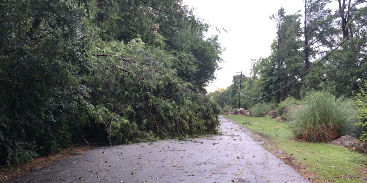 Early morning storms leave damage across the Midlands