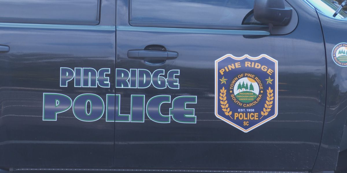 Residents call for Pine Ridge mayor to resign after resignation of entire police force
